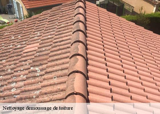 produit nettoyage toiture free nettoyer sa toiture entretien et nettoyage duun toit with. Black Bedroom Furniture Sets. Home Design Ideas